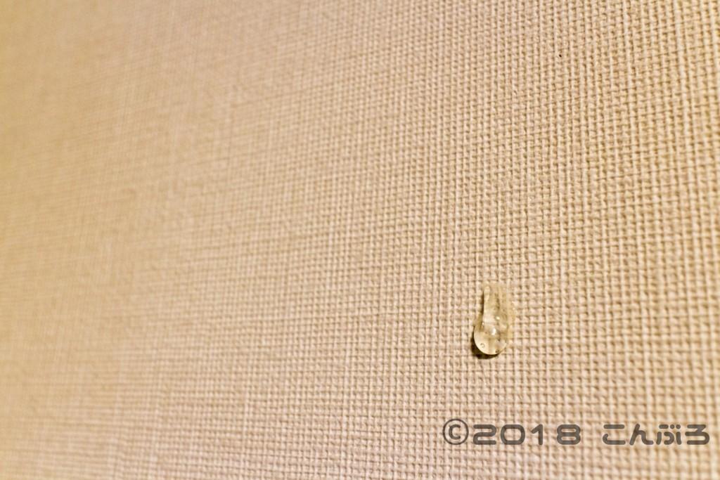 100均変成シリコーンを壁に付けた後のテスト