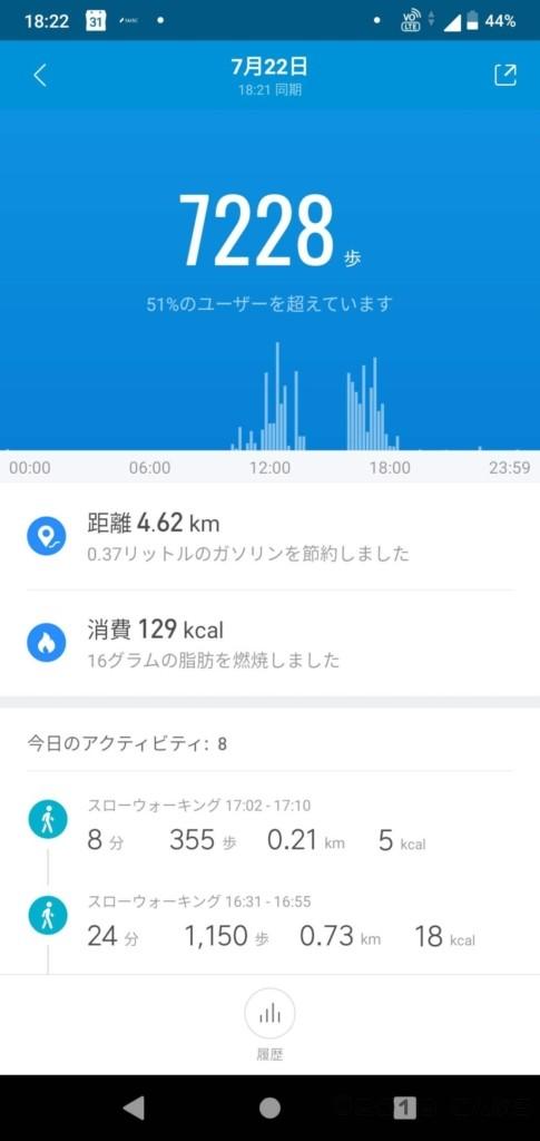 1日の歩数グラフ