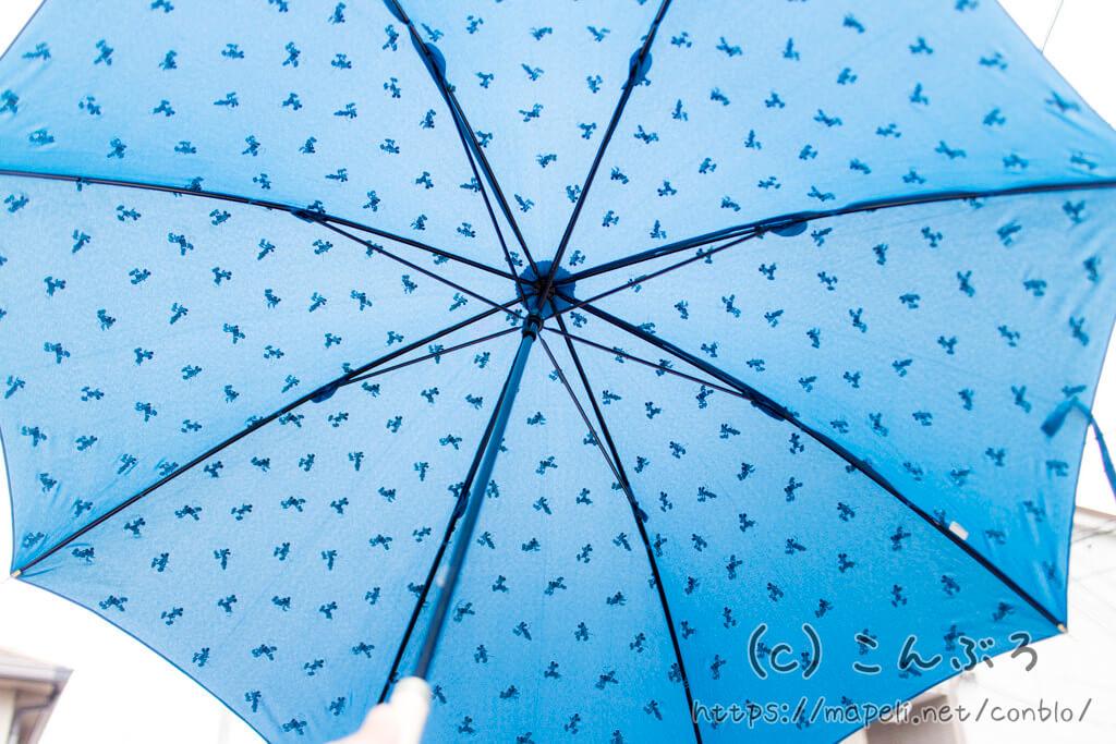 ディズニー傘でもWpcなのでしっかり